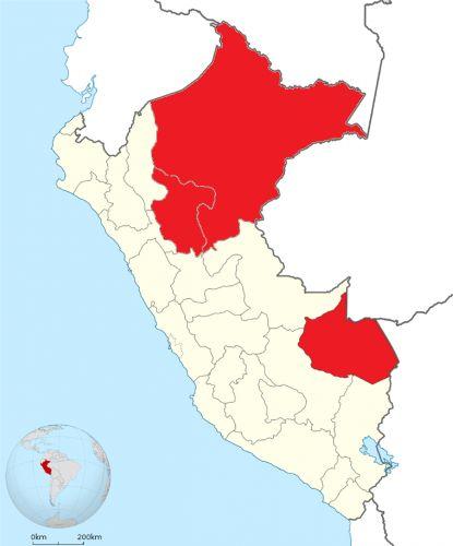 Minsa declara en emergencia sanitaria a Loreto, Madre de Dios y San Martín para combatir el dengue.